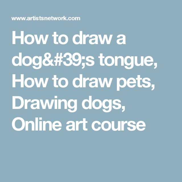 How to draw a dog's tongue, How to draw pets, Drawing dogs, Online art course
