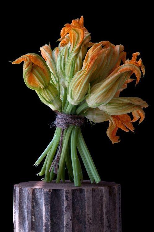wishespleasures:  Je ne sais QUOIS    ♔ Fleurs de squash - Par Lynn Karlin via/n-o-v-s: wasbella102:
