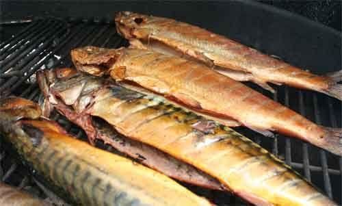 Forelle und Makrele nach dem Räuchern