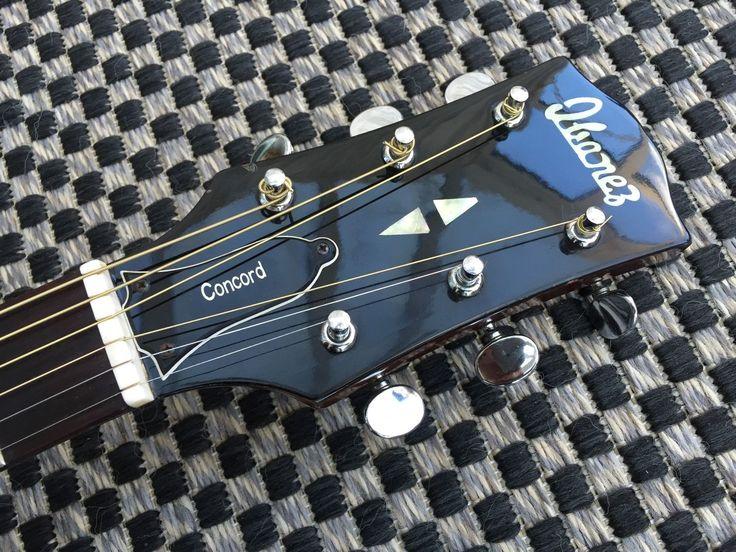 Ibanez Concord 65