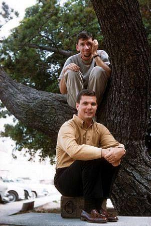 Bob Denver And Dwayne Hickman