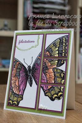 """By France Labrecque. Uses """"Swallowtail"""" stamp from Stampin' Up. Probably stamped in black then colored with markers. I like the way she cut the image layered the panels onto purple mats then all of them on a green mat before attaching them to a white card base."""