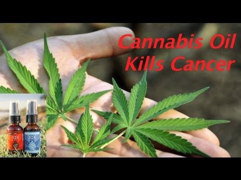 Cannabis Oil Cancer Cure Documentary 2017 - ✅WATCH VIDEO👉 http://alternativecancer.solutions/cannabis-oil-cancer-cure-documentary-2017/     Buy Cannabis Oil Today Cannabis oil Cancer of cannabis oil Cannabis Cancer Documentary on cannabis oil Cannabis Oil Benefits of cannabis oil Cannabis Oil   Video credits to UFO CONDUIT YouTube channel