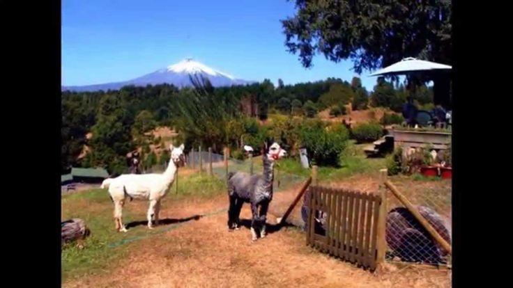 Chile kleine Farm für Auswanderer