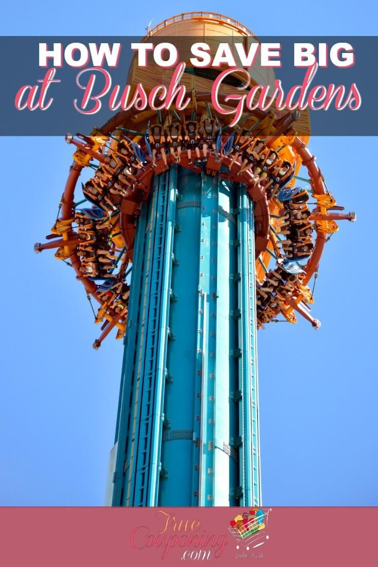 fc252ba365b2a129025fb28ee009ad46 - Buy One Get One Free Busch Gardens Tampa