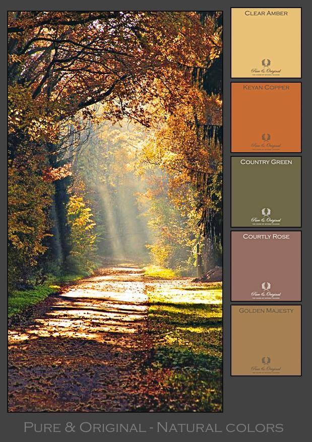 21 best INSPIRATION - Natural colour's - Natuurlijke kleuren ...