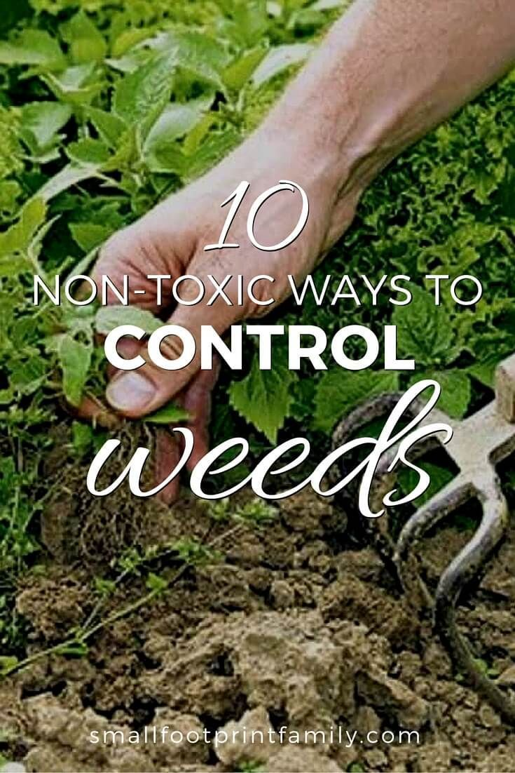 Although digging or hoeing is the most effective method for removing weeds, it can be tempting to use a little store-bought herbicide to make quick work of your weeds. But there are some very important health reasons to avoid them. Here are 10 non-toxic w