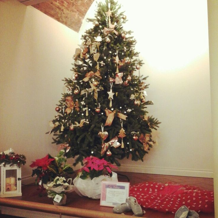 Christmas tree at Top Dance shop in Prato