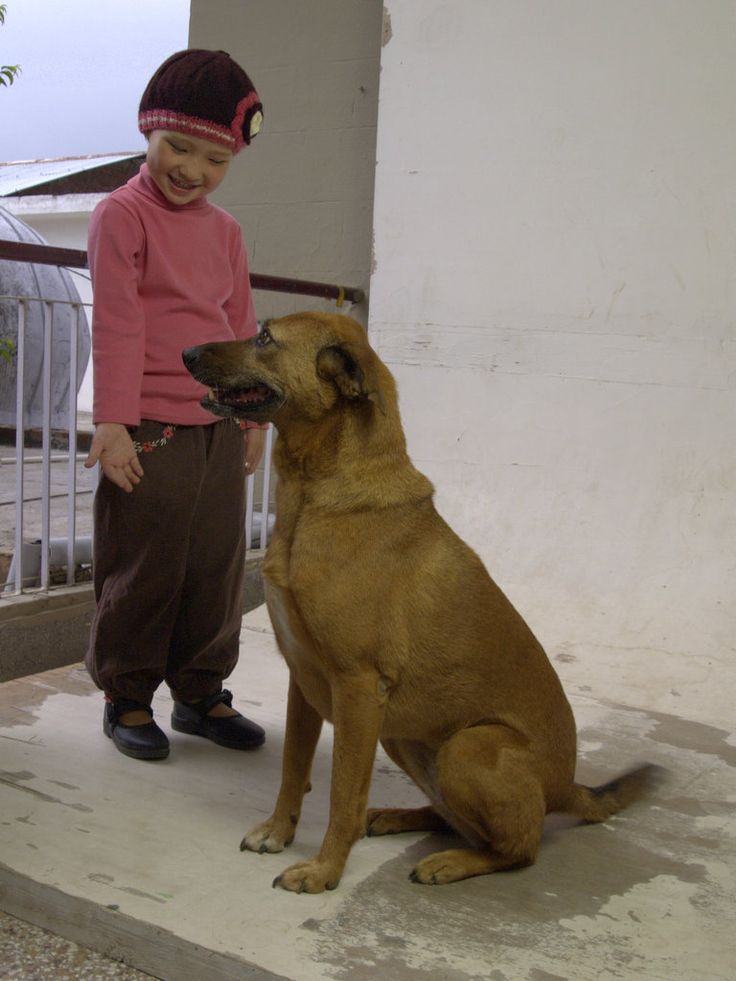 Betsy gives Rinchen some modelling tips at the Workshop this week.