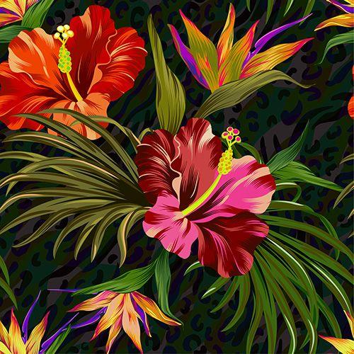 hibiscus4small.jpg