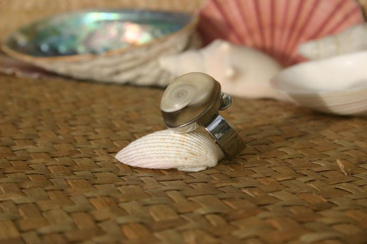 Cat's Eye Shell from New Zealand turned into a high-quality ring! #jewelry #handmade