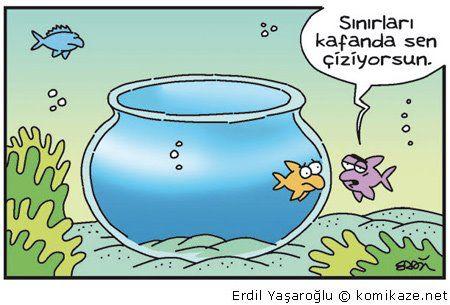Image from http://thegeyik.com/wp-content/uploads/2014/08/erdil-yasaroglu-karikaturleri-sinirlar.jpg.