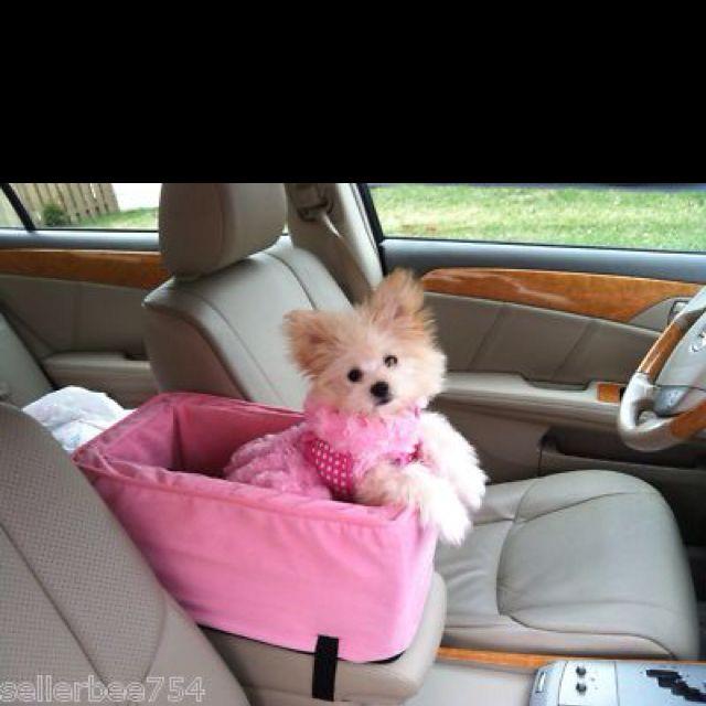 Pink dog car seat.