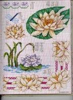"(2) Gallery.ru / irislena - Альбом ""Ботаника-цветы"""