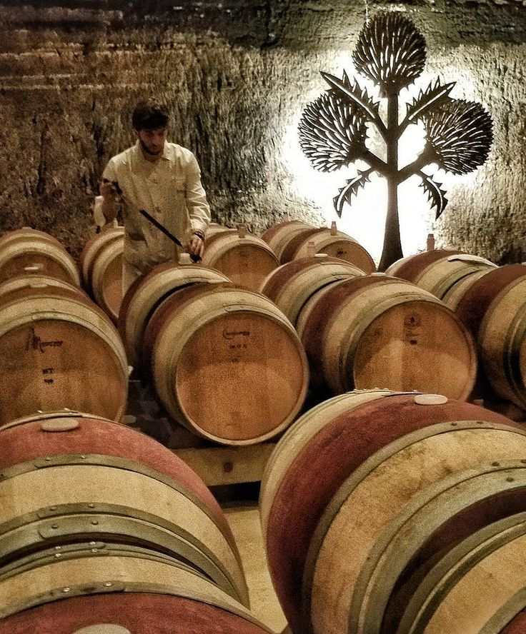 Tiempo de muestreo y control del vino #Rioja #tourism #winetours #travel #wine #winelover #turismo #enoturismo #experience #winetastelovers #riojawine #gastronomía #visitSpain #vino #viaje #tapas #winetasting #instariojawine #gastronomy #instawinetours #winecountry #wineries #worldplaces #winetrip #winetravel #viajar #grapevines #winetourism #wineregion #lp