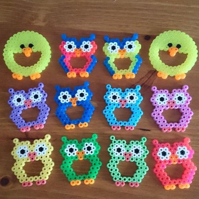 Owls (and ducks) hama beads by zaneiro