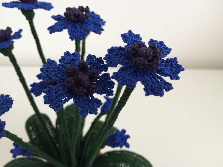 Un fiore delicato che significa leggerezza e rappresenta la felicità. Sempre più raro poter ammirare nei campi di grano questo bellissim...