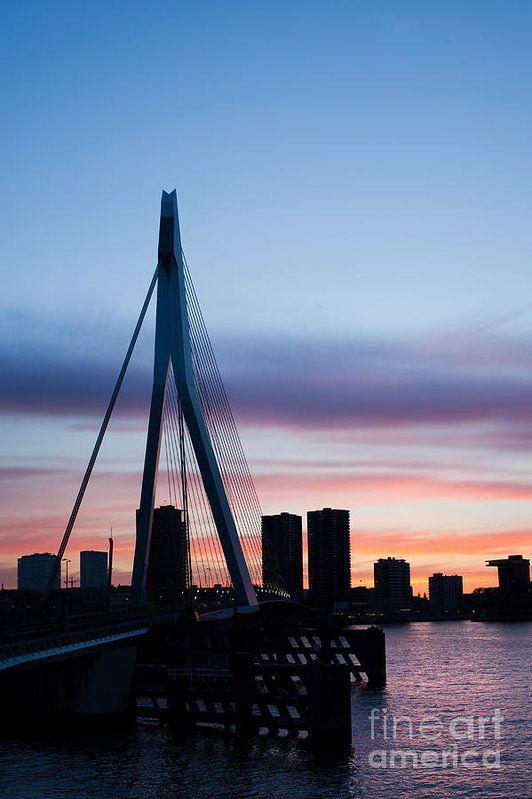 Rotterdam Print featuring the photograph City Of Rotterdam Skyline Silhouette by Artur Bogacki