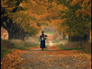 Anne of Green Gables. the Canadian scenery from this movie is stunning and I WILL go there someday.