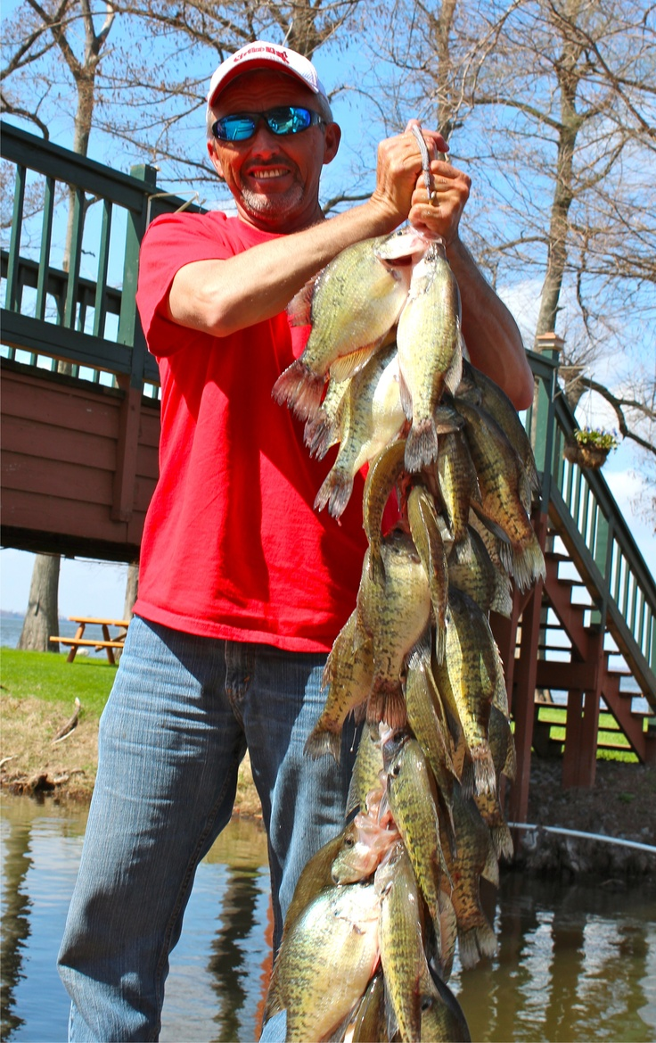 9 best reelfoot crappie images on pinterest fishing for How to fish for crappie from the bank