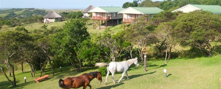 BENMORE LODGE - need a break - need a holiday or just a week-end away then BENMORE LODGE is the place to go - set in tranquil natural environment - connect with us on our Website www.benmorelodge.co.za
