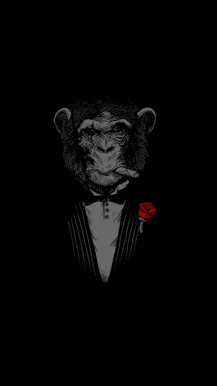 Download Godfather Monkey 4k Wallpaper By Capone6 B1 Free On Zedge Now Browse Millions Of Monkey Wallpaper Pure Black Wallpaper Dark Background Wallpaper