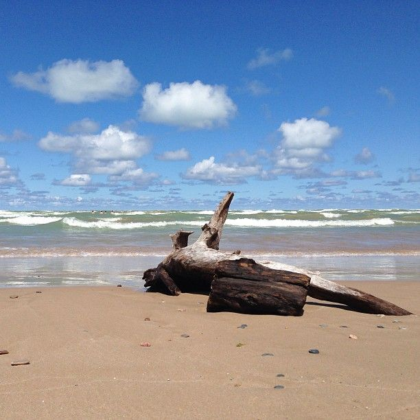 Pinery Provincial Park, Grand Bend, ON