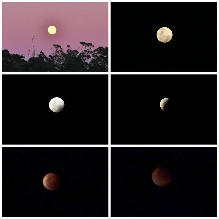 Had a great view of the Lunar Eclipse that occurred on the 8th of October 2014. Must get a tripod for my camera, so I can get better shots of this kind of thing!