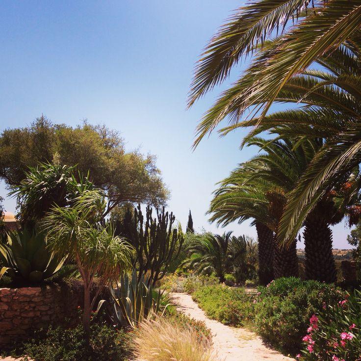 So beautiful garden at Les Jardins des Douars!