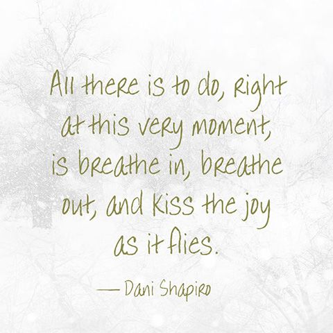 """All there is to do, right at this very moment, is breathe in, breathe our, and kiss the joy as it flies."" — Dani Shapiro"