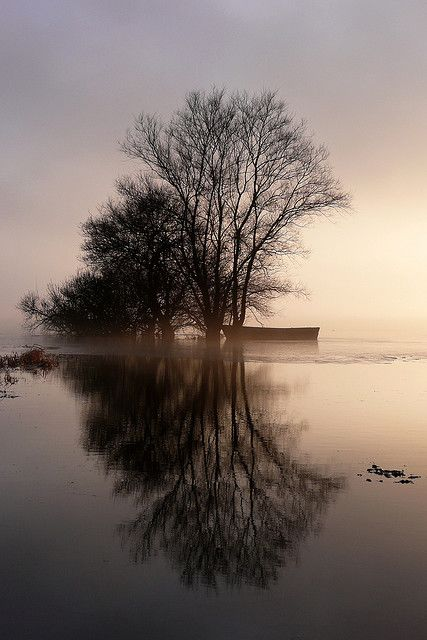 Lac de grand Lieu - Saint-Philbert-de-Grand-Lieu ( France )