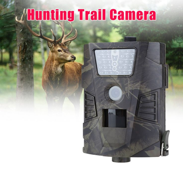 Hunting 12MP Infrared IR LED Video Wildlife Digital Trail Camera Scouting IP54 #Unbranded