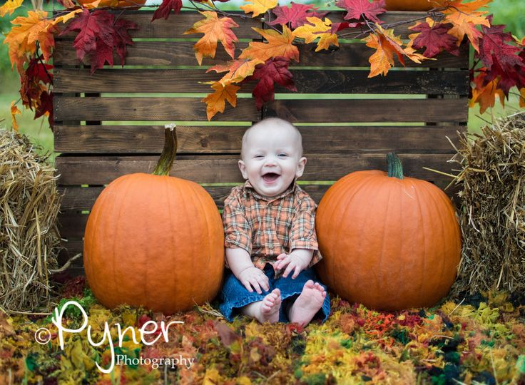 Pyner Photography at Hall Family Farm in South Charlotte, NC $5 photos September through the end of october www.pynerphotogra... www.facebook.com/... fall pumpkins pumpkin patch hay bales country fall family poses photography scarecrow toddler baby babies costumes Halloween