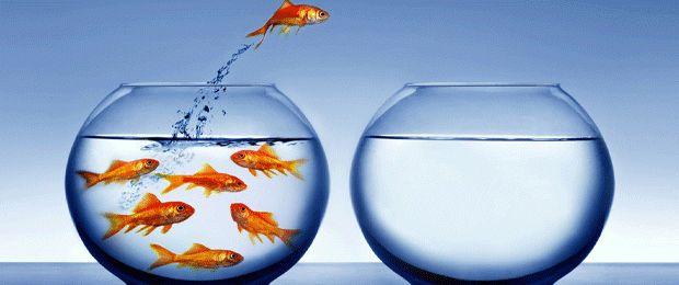Какими качествами отличаются успешные люди от обычных?