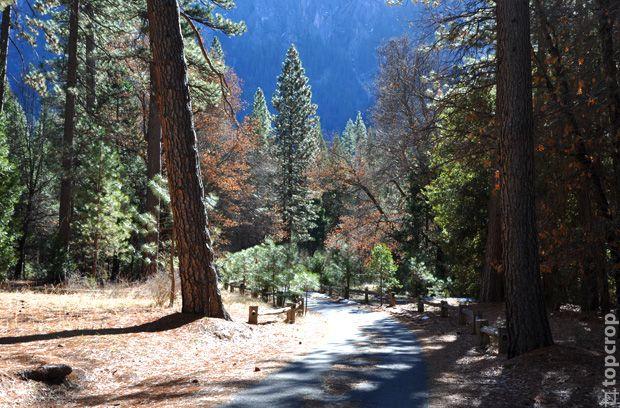 Национальный парк Йосемити в США (Yosemite National Park)
