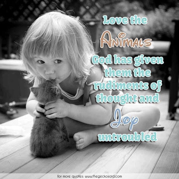 Love the animals. God has given them the rudiments of thought and joy untroubled.  #animals #children #given #god #joy #love #quotes #rudiments #thought #untroubled