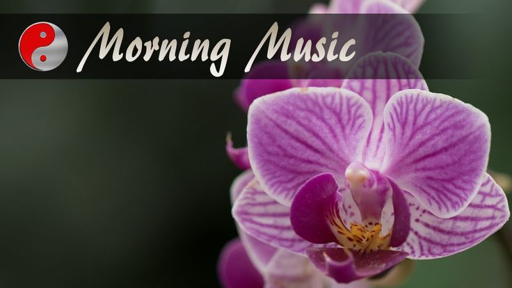 Morning Music For Relaxation: Beautiful Nature Sounds, Relaxing Music Fo...