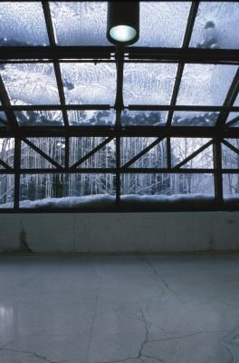 How to Heat a Greenhouse With Water