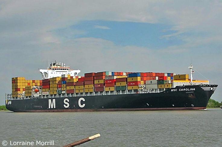 """Buque: """"MSC CAROLINA"""". Año de contrucción: 2005. Tipo: Portacontenedores. Propietario: Mediterranean Shipping Company. Operador: MSC (Suiza). Dimensiones: Eslora 247,67 m. Manga 40 m. Calado 14,2 m. Carga (DWT): 72.037 Tm. Capacidad máxima contenedores TEU: 5.919. Contenedores frig.: 400. Motor: SULZER Tipo: RTA96C. Potencia: 51.485 Kw. (69.043 HP). Velocidad: 17,3 nudos. Distintivo: 3ECV5. IMO: 9295397. Bandera: Panamá."""