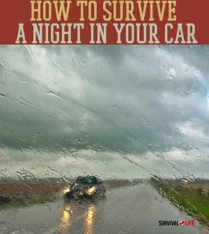Survive an emergency situation in your car | Survival Prepping Ideas, DIY, Survival Gear and Preparedness at Survival Life Blog : survivallife.com