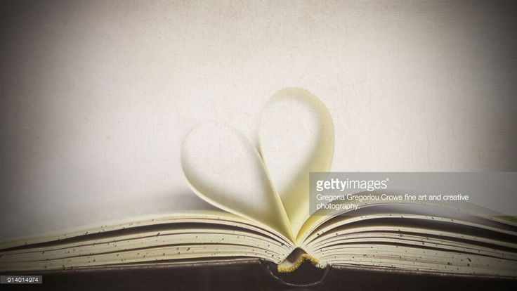 An open hardcover book with pages folded to look like a heart with white background and flypaper textures overlay.