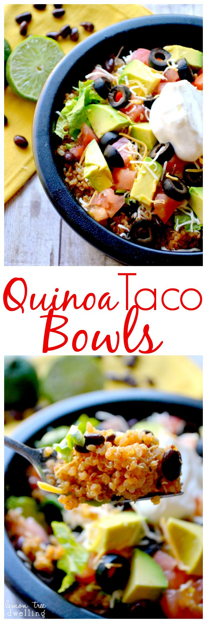 Quinoa Taco Bowls Recipe // #healthy #mexican #food