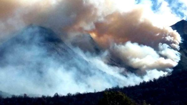 ¿Quién está detrás de los incendios en los bosques patagónicos? La respuesta te va a provocar indignación | Patagonia