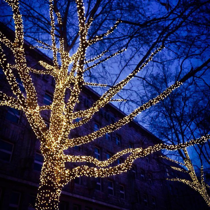 Kerstmarkt in Essen- Ik kijk liever naar de prachtig verlichte bomen en de hemelsblauwe avondlucht.  #weihnachtsmarkt #kerstmarkt #lichtjes #kerstmis #christmas