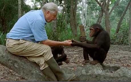 Sir David Attenborough with a friend...
