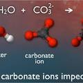 What is Ocean Acidification? from the PMEL Carbon Program at NOAA