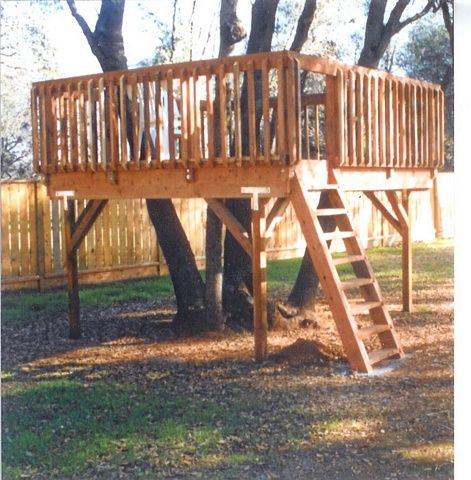 Best 25 tree deck ideas on pinterest tree house deck for Tree house blueprint maker