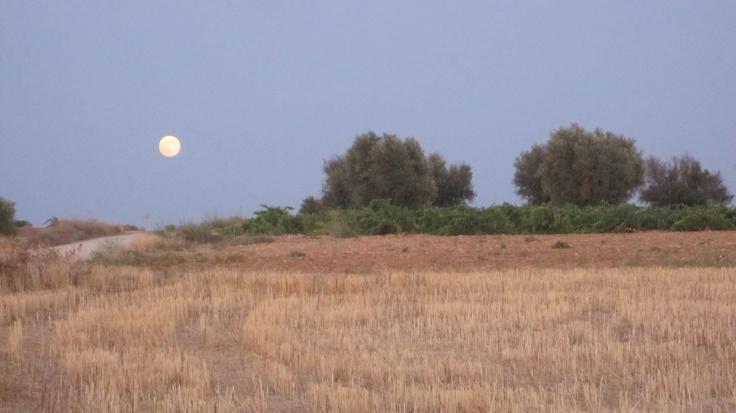 La Luna Manchega