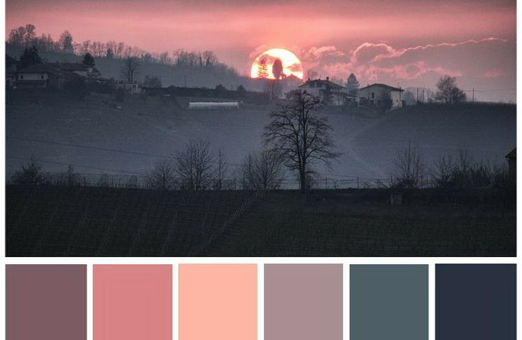 Colors palette | gsliephotogallery