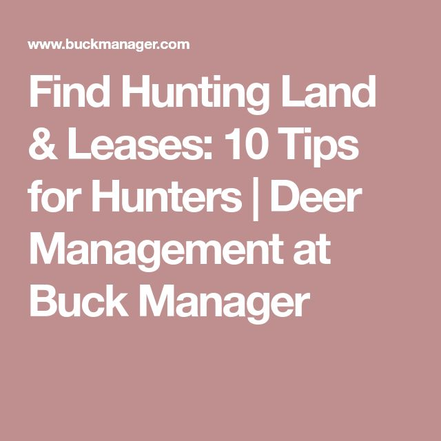 Best 25+ Hunting land for lease ideas on Pinterest House - hunting lease agreement